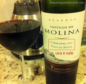 chile-vinho