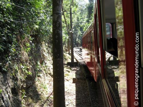 Trenzinho do Corcovado, caminho para o Cristo