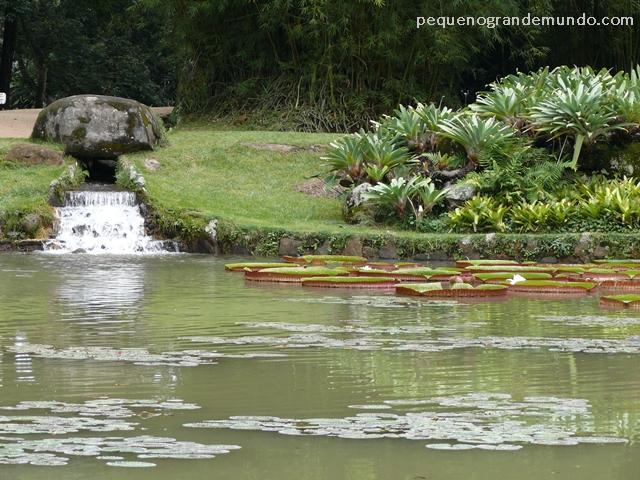 Lago Frei Leandro no Jardim Botânico do Rio Janeiro