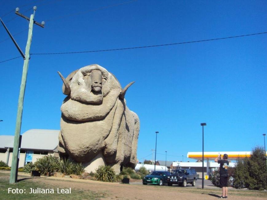 """""""Aqui tem mais canguru e ovelha do que gente, então nada mais justo que a homenagem com uma super estátua."""" Juliana Leal"""