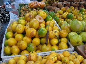 Fruta Amazônica: Abiu