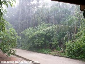 Pegando chuva no INPA: senta e espera passar