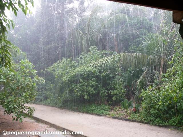 chuva em Manaus
