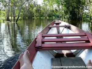 Passeio de canoa por igapós: floresta inundada