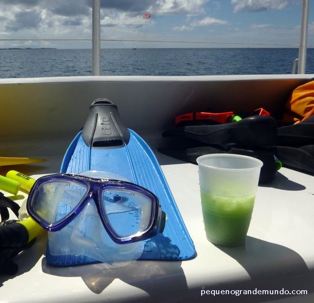 drink Aruba Aribe no passeio de barco para snorkelling