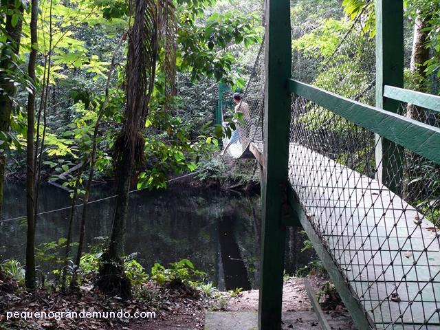 Trilha para Cachoeira da Onça