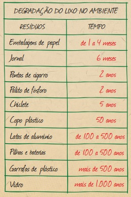 Imagem: Passaporte Verde