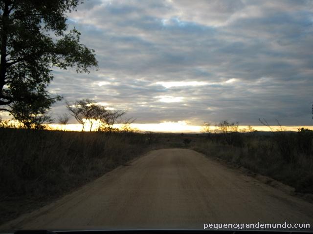 O sol se põe na savana africana: hora dos felinos acordarem e saírem para caçar, e de os carros de visitantes voltarem rápido para seus camps.