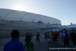 Arena da Amazônia: me arrisco em dizer que é o estádio mais bonito da Copa 2014