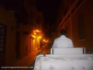 Passeio de carruagem pela cidade murada