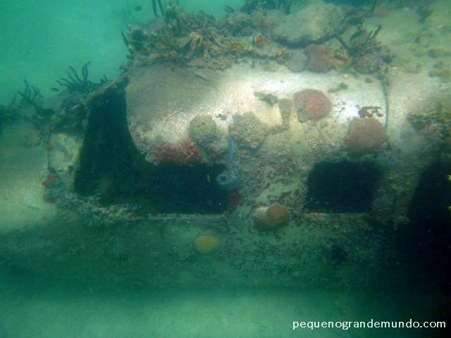 Naufrágio de avião de Pablo Escobar nas Islas Rosario, visto durante snorkelling