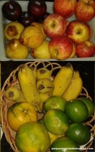 Frutas resistentes para viagens