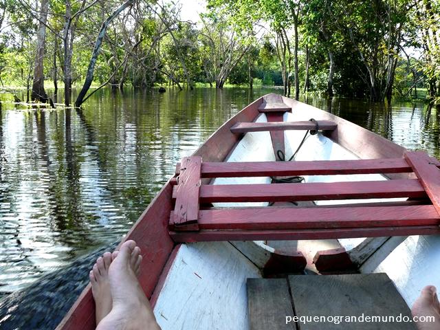 Passeios de canoa motorizada em igarapés