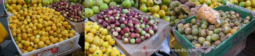 frutas amazônicas