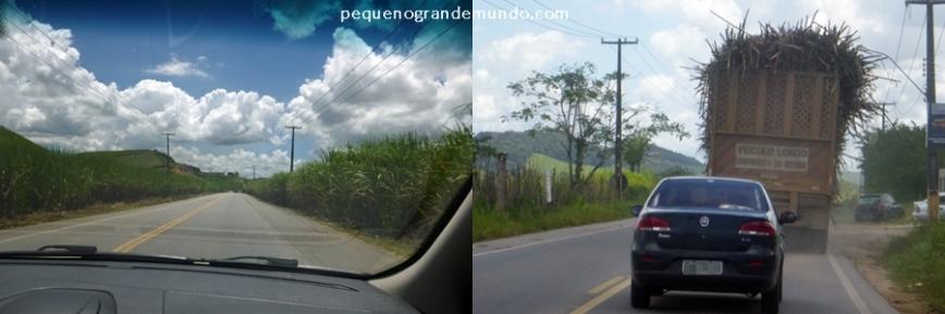 Estrada para Maragogi: canaviais e muitos caminhões