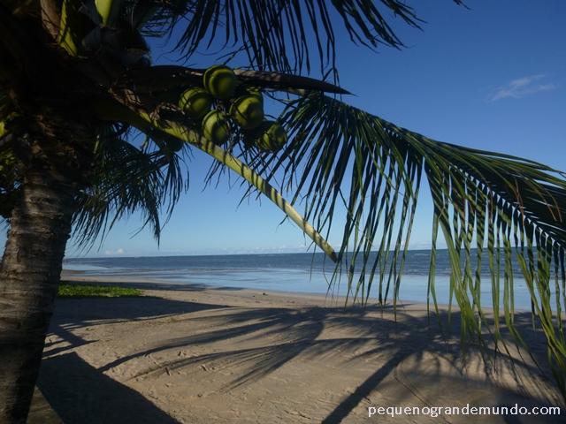 Praia de São Bento, Maragogi